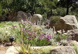 Small Picture Design Ideas for Your Native Garden Start With a Plan The Santa