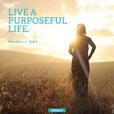 Purpose Quotes Custom Purposeful Life