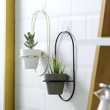 41 best plant pots for houseplants