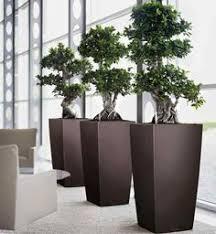 office flower pots. Creative Interior Plantscapes - Plants (7) | Flower Design Pinterest Plants, And Indoor House Office Pots F