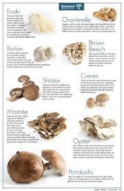 mushroom info