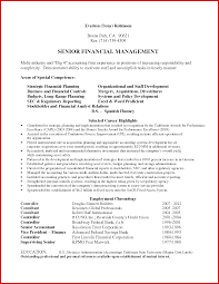Senior Financial Auditor Resume Camelotarticles Com