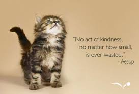 Image result for picture kindness act