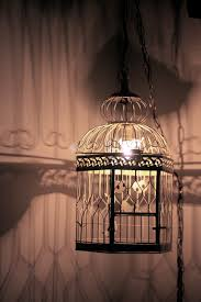 bird cage lamp diy