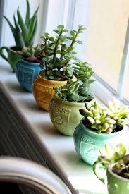 indoor mini garden sensational inspiration ideas 18 40 smart