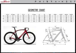 Carrera Bike Size Chart Carrera Podium Phibra Next 2019 Road Bike