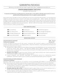 Great Resume Formats Delectable Great Resume Templates This Is Great Resume Formats Modern Best