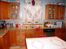 Bungalow Kitchen Ideas Exciting Bungalow Kitchen Design Ideas Painted Wood Cabinet