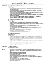 Sales Development Resume Samples Velvet Jobs