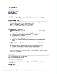 Resume Samples For Banking Professionals And Skills Based Resume