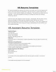 Human Services Resume Template New Human Services Resume Best