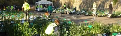 plant run by the australian native plant society
