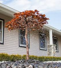 copper garden art. Japanese Maple Copper Garden Tree Art R