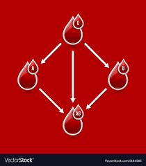 Red Blood Type Chart