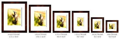 8 x 10 picture frame glass double 8 x picture frames picture frames each is matted