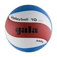 <b>Волейбольный мяч GALA</b> в России. Сравнить цены, купить ...