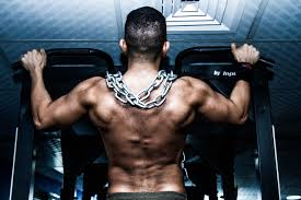 best bination of supplements for weight losuscle gain