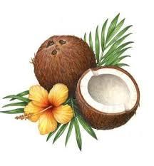 Коллекция картинок: <b>Фруктово</b>-ягодное | Польза <b>кокосового</b> ...