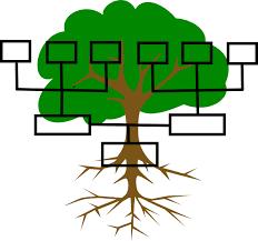 The Family Tree Project K Lazaro