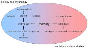 Types Of Memory Chart There Are Different Types Of Memory Fact Or Myth