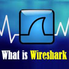 Brief Description Of What Is Wireshark And Its Applications Web3mantra