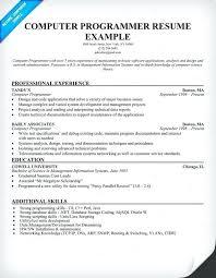 Sample Computer Programmer Resume Software Programmer Resume Penza Poisk