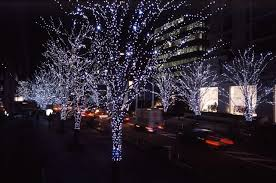 christmas lights outdoor trees warisan lighting. Christmas Outdoor Light Ideas You Can Make For Trees Lights Warisan Lighting
