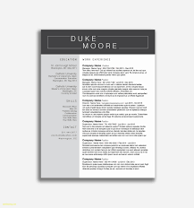 Sample Resume For Legal Consultant New Legal Resume Examples New