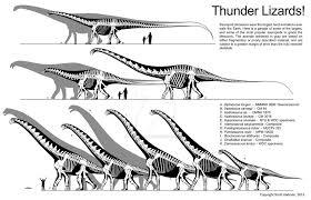 brachiosaurus size thunder lizard size comparison by scotthartman on deviantart