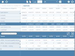 Financial Statement Software Free Mobile Financial Reporting With Evm Mobile Try Now Obligation Free