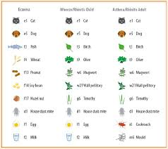 Allergies Types Symptoms Causes And Test Procedures