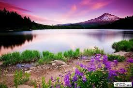 Nature desktop, Landscape pictures ...