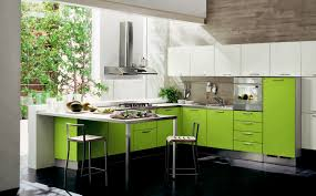 Green And Grey Kitchen Light Green Of Home Kitchen Cabinetry With Drawers And Lockers