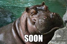Hungry Hippo memes | quickmeme via Relatably.com
