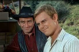 Pin by Wendy Potter on The virginian | The virginian, James drury, Handsome  men