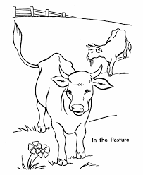 Small Picture Printable cow coloring pages for kids ColoringStar