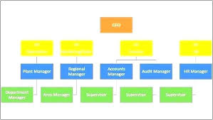 Functional Organizational Chart Template Organization Structure