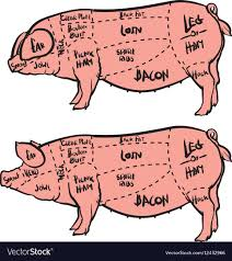 Pork Chart Cuts Of Meat Hand Drawn Pig Diagram Butcher Diagram