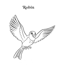 Small Picture Happy Robin Bird Coloring Page Download Print Online Coloring