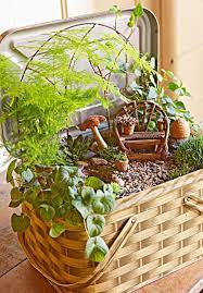 fairy garden container ideas. Create A Magical Miniature Garden Fairy Container Ideas E