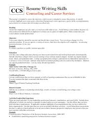 Cv Writing Skills Example How To Write Technical In Resume