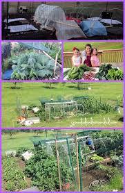 5 000 sq ft vegetable garden plan