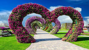Beautiful Nice Animation With Natural Flower Scenery Dream
