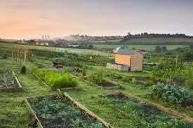 Garden Plot Design Ideas 20 Free Garden Design Ideas And Plans Raised Garden Bed Plans