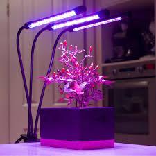 How Close To Keep Led Grow Lights Breezygro Led Grow Light