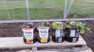 DIY How to make self watering planters | recycle trash |