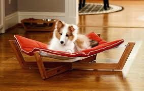 fancy pet furniture. Pet Furniture Fancy Dog Beds Comfortable And Trendy Ideas Off Spray