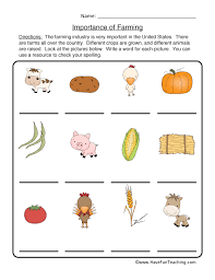 Plant Worksheets | Have Fun Teaching