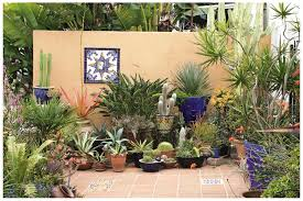Small Picture beguiling potted plant house designs image credit and contact