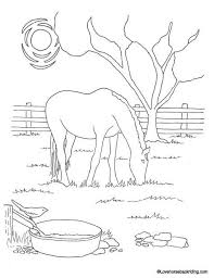 Small Picture Printable Horse Coloring Pages For You To Enjoy